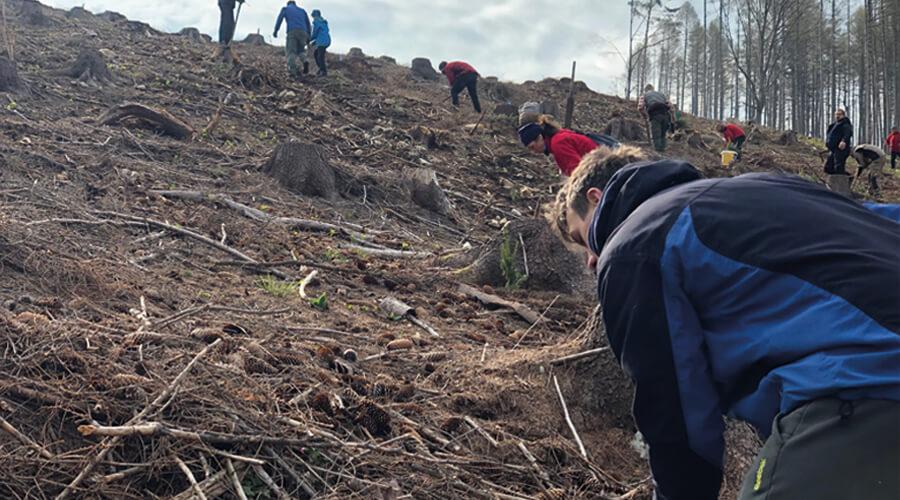 Kopanie jamiek pre výsadbu stromčekov v Mošovciach